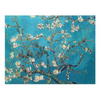 Blühende Mandelbaum-schöne Kunst Postkarte