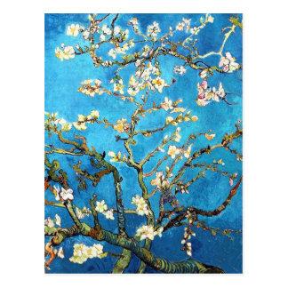 Blühende Mandelbaum-Van- Goghschöne Kunst Postkarten