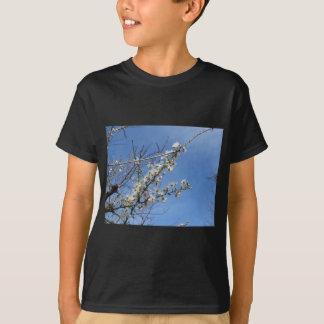 Blühende Pflaume gegen den Himmel. Toskana, T-Shirt