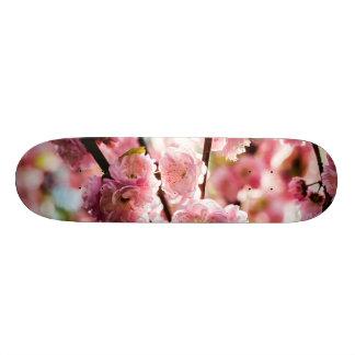 Blühende Pflaume - rosa Paradize Bedrucktes Skateboard