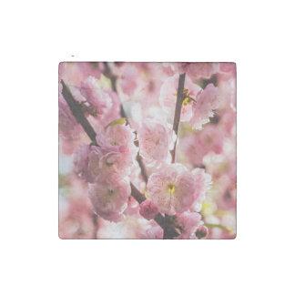 Blühende Pflaume - rosa Paradize Stein-Magnet