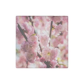 Blühende Pflaume - rosa Paradize Steinmagnet
