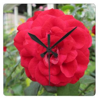 Blühende Rosen-Blume Quadratische Wanduhr