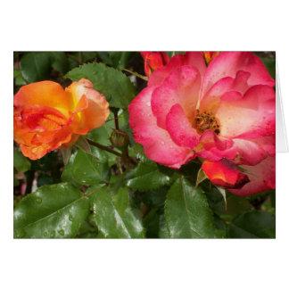 Blühende Rosen Notecard Karte