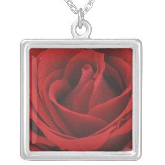 Blühende Rote Rose Versilberte Kette