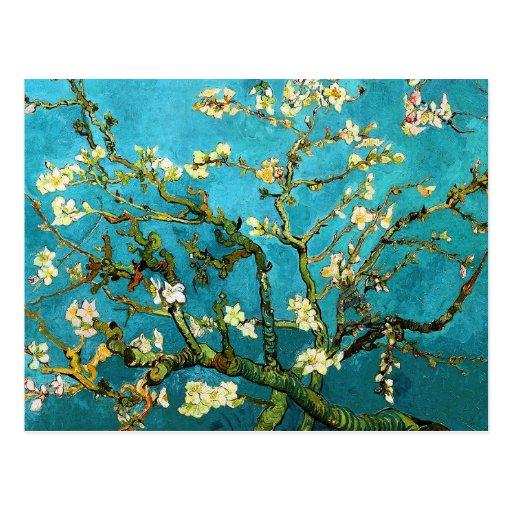 Blühende schöne Kunst Van Gogh des Postkarte