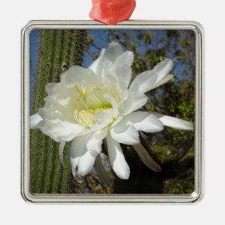 Blühende weiße Kaktus-Blume, Silbernes Ornament