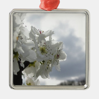 Blühender Birnenbaum gegen den bewölkten Himmel Quadratisches Silberfarbenes Ornament