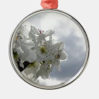 Blühender Birnenbaum gegen den bewölkten Himmel Silbernes Ornament