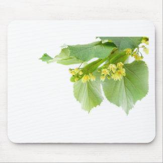 Blühender Zweig von limetree oder von Lindenbaum Mousepad