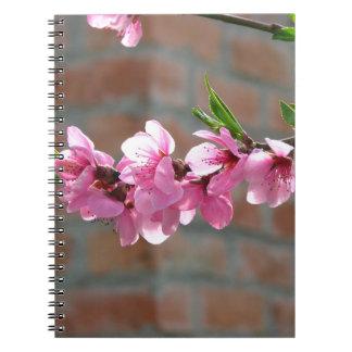 Blühendes Baumnotizbuch Spiral Notizblock