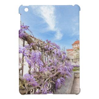 Blühendes blaues Glyzinien sinensis auf Zaun in Hüllen Für iPad Mini