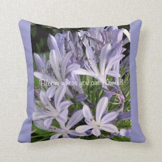Blühendes lila Agapanthus-Blumen-Kissen Kissen
