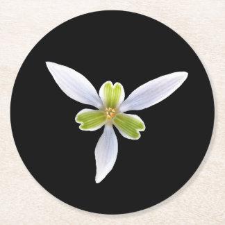 Blume auf Schwarzem Runder Pappuntersetzer