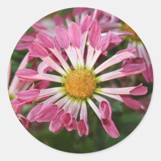 Blume Runder Aufkleber