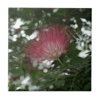 Blume der Distel Rosa Kleine Quadratische Fliese