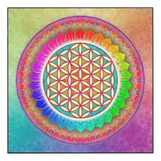 Blume des Lebens - Regenbogenlotos I