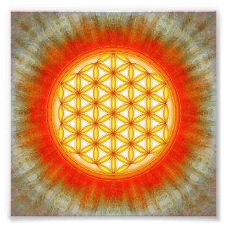 Blume des Lebens - Sonne II Photodrucke