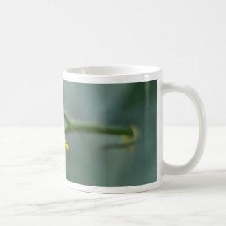 Blume einer Gurken-Pflanze Kaffeetasse