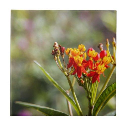 Blume Keramikkachel