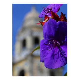 Blume im Balboa-Park Postkarte