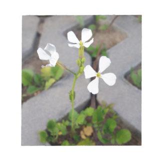 Blume im Parkplatz Notizblock