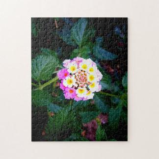 Blume in der Blüte Puzzle