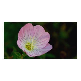 Blume Karte