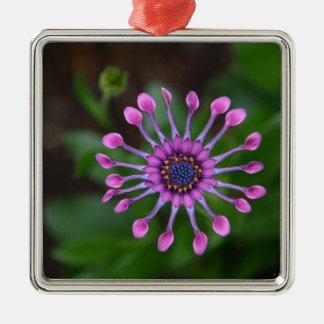 Blume Quadratisches Silberfarbenes Ornament