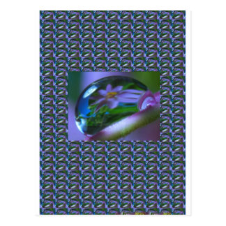 Blume REFLEXION auf einem TAU-TROPFEN.  Postkarte