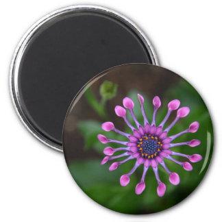 Blume Runder Magnet 5,7 Cm