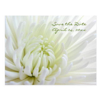 Blume Save the Date, die Postkarte Wedding ist