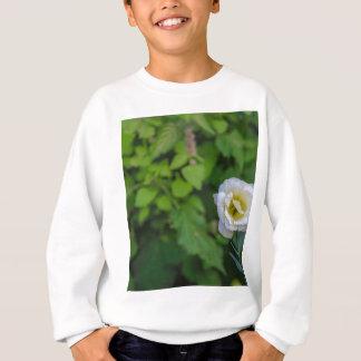 Blume Sweatshirt