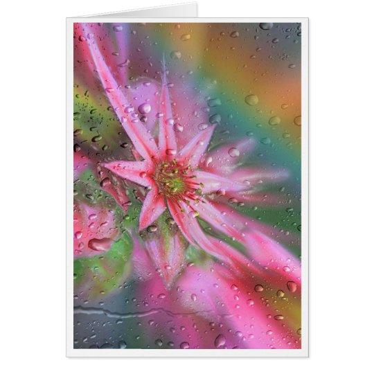 Blume vorm Regenbogen Karte