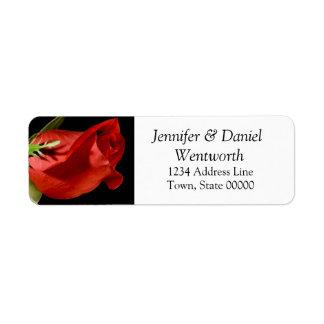Blumen-Adressen-Etiketten Rote Rose Rücksendeetikett