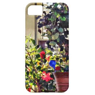 Blumen auf Portal Etui Fürs iPhone 5