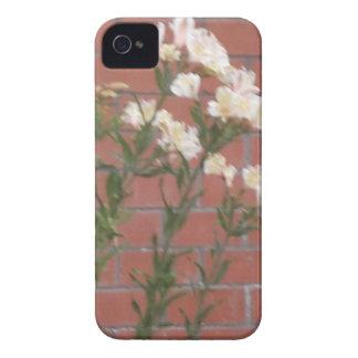 Blumen auf Ziegelstein iPhone 4 Case-Mate Hüllen
