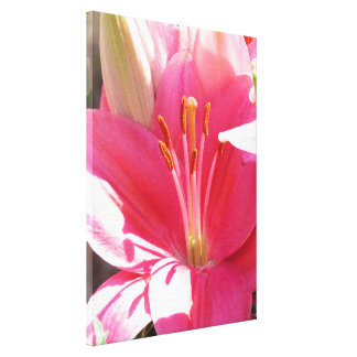 Blumen-Blumengarten-Blüten-Fotografie Leinwanddruck