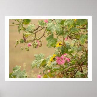 Blumen-Blumengarten-Blüten Poster