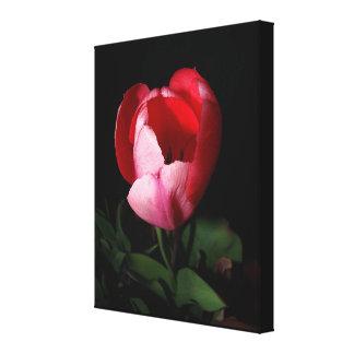 Blumen-Blumengarten-Fotografie Leinwanddruck