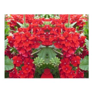 Blumen-Blumenstrauß-Kirschhügel NJ NVN213 Postkarte