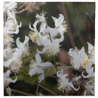 Blumen der Reisend-Freude (Clematis brachiata) Serviette