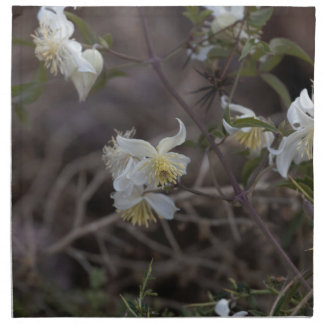 Blumen der Reisend-Freude (Clematis brachiata) Stoffserviette