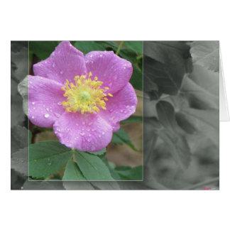 Blumen durch den See - Rosa Karte