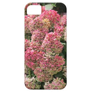 Blumen eines Franzosen Hydrangea (Hydrangea iPhone 5 Hülle