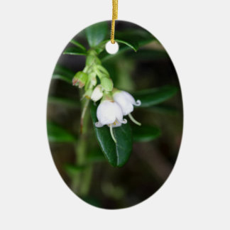 Blumen eines wilden Lingonberry (Vaccinium Ovales Keramik Ornament
