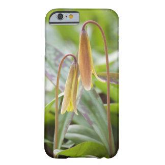Blumen-Freund-Telefon-Kasten - Barely There iPhone 6 Hülle