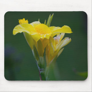 Blumen-Gelb Mauspad