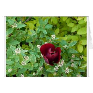 Blumen- Grußkarte