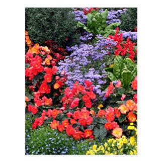 Blumen in Anchorage, Alaska, USA Postkarte